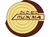 """Логотип ООО """"Эколес-Пижма"""""""