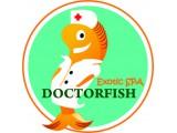 Логотип DoctorFISH - Exotic SPA