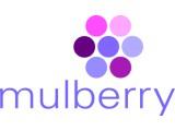 Логотип Рекламное агентство «Mulberry»
